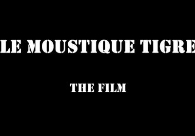 Un film d'information sur le moustique tigre